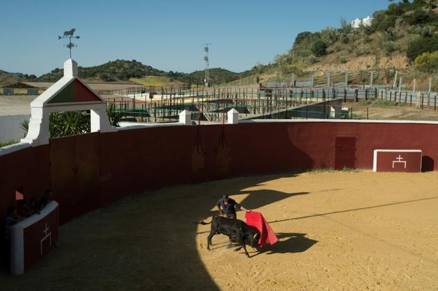 Le matador Javier Conde dans l'arêne d'entraînement, le 26 mai 2020 [JORGE GUERRERO / AFP]