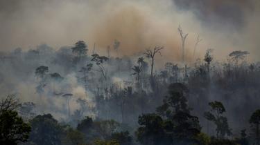 Feu de forêt à Altamira, dans l'Etat de Paris, en août 2019 au Brésil [Joao Laet / AFP/Archives]