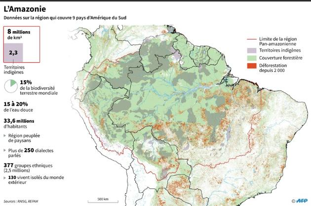 L'Amazonie [Patricio ARANA / AFP/Archives]