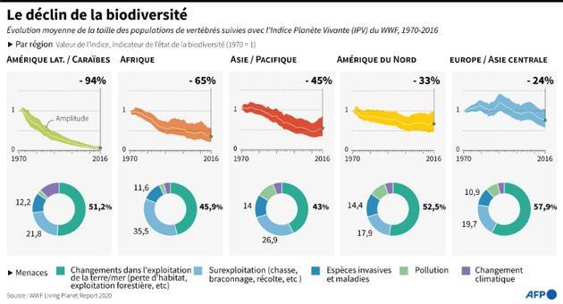 Le déclin de la biodiversité [Gal ROMA / AFP]
