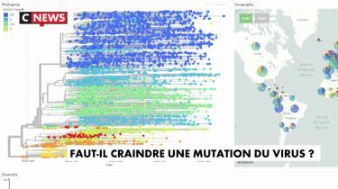 Faut-il craindre une mutation du virus ?