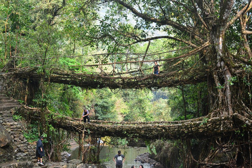 dm_img_paysage_avant_crop_double_decker_living_root_bridge_01_602ea920dff26.jpg