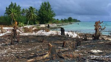 Des dizaines d'essais nucléaires français ont eu lieu en Polynésie de 1966 à 1996.